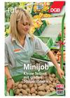 Broschüre Minijob – Kleine Teilzeit mit großen Stolpersteinen